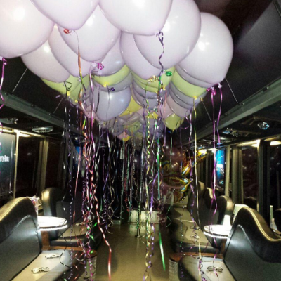 Party bus ideas in Chicago